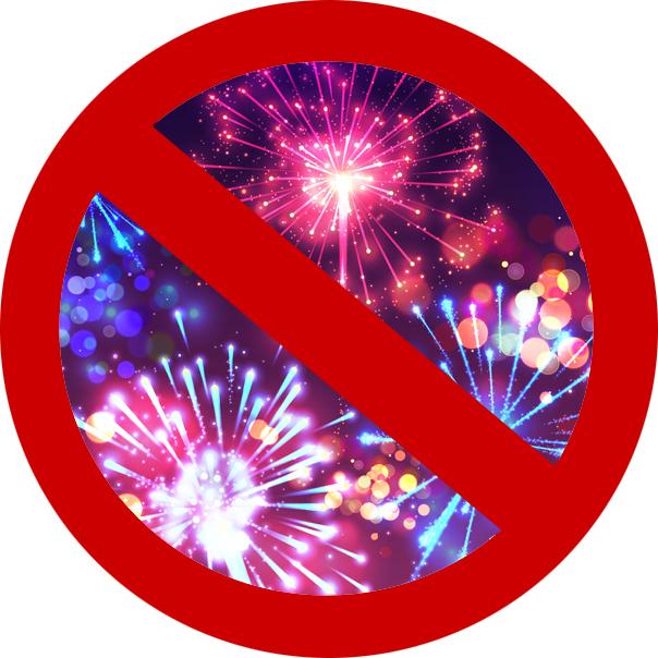 Abbrennverbot von Feuerwerkskörpern zum Jahreswechsel