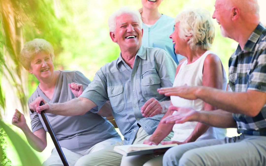 Wie viele Senioren haben Interesse an einem WG-Zimmer?